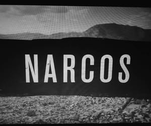 tv show, tv serie, and narcos image