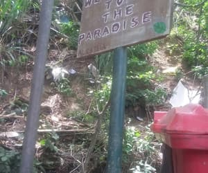 paradise, rj, and welcome image