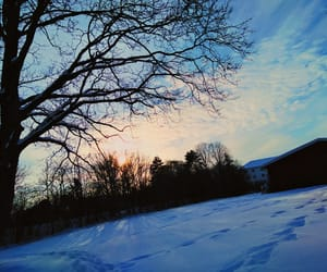 blue, snow, and snowy image