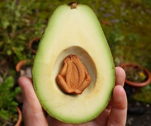 art, carving, and avocado image