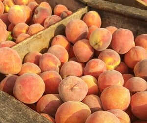 fruit and peach image