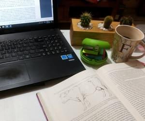 homework, study, and vacas image
