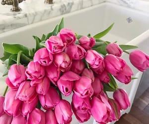 розовый, весна, and цветы image