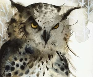 art, owl, and nature image