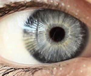 grey eye, grey eyes, and silver eyes image