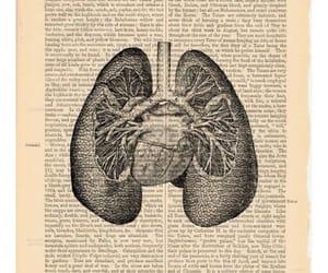 anatomy, artwork, and black image