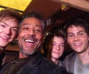 thomas, newt, and the scorch trials image