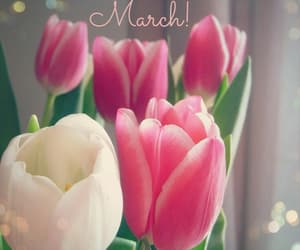 march and hello image