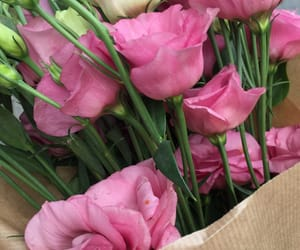 aesthetic, love, and eustoma image