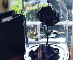 black, dark, and flowers image