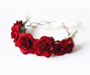 flower crown, flowers, and red roses image