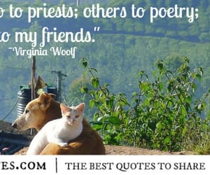 poetry, priest, and quote image