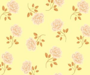 background, floral, and rose image