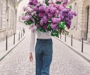 city, flowers, and purple image