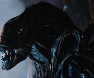 alien, creature, and movie image
