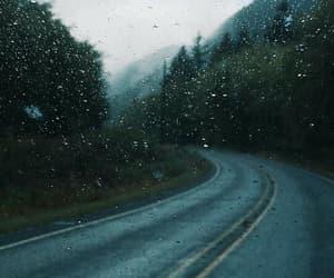 places, rainy, and tree image
