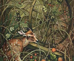 bird, botany, and deer image