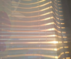 aesthetic, morning, and curtain image