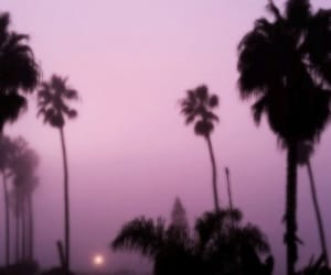 header, purple, and tumblr image
