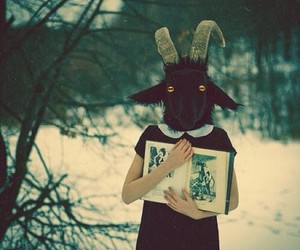 book, goat, and snow image