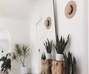 aesthetic, decor, and cute image