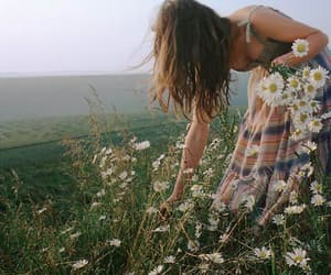 beauty, grass, and nature image