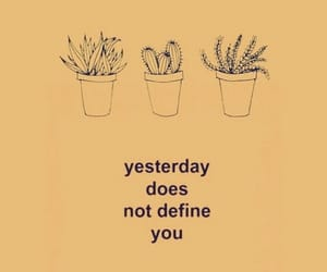 background, quote, and cactus image