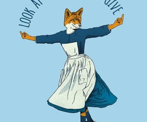 fox, funny, and wallpaper image