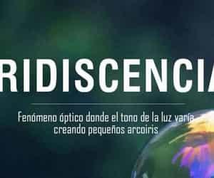 palabras and iridiscencia image