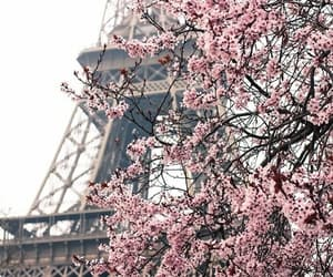 beautiful, parís, and eiffel tower image