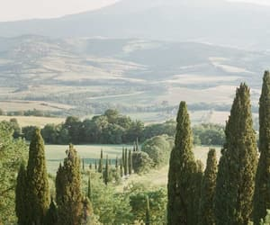 calm, green, and italy image