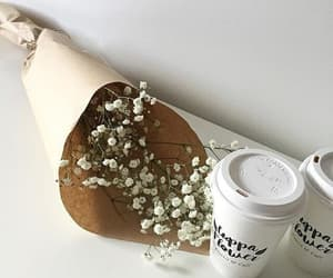 aesthetic, flowers, and minimalist image
