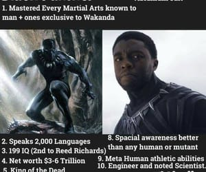 black panther, character, and comics image