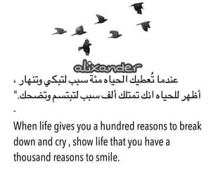 dz, tumblr, and العربية image