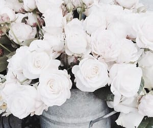 beautiful, bouquet, and bucket image