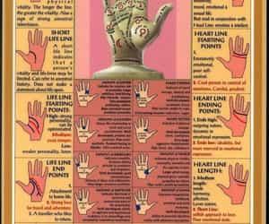 palmistry image