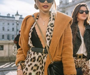 cheetah, runway, and coat image