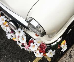 car, vintage, and white image