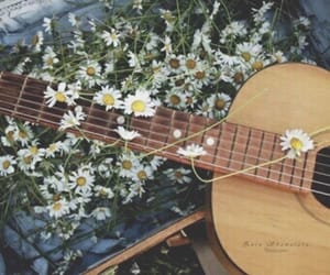 floral, guitar, and spring image