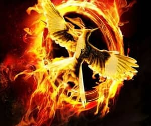 bird and hunger game image