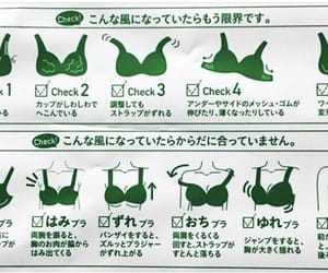 brassiere, lingerie, and 下着 image
