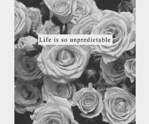 black and white, quote, and life image