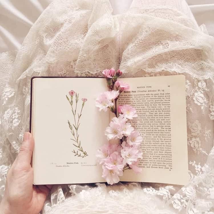 article, demi lovato, and books image
