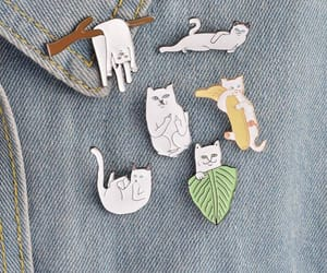 aesthetic, cats, and clothes image