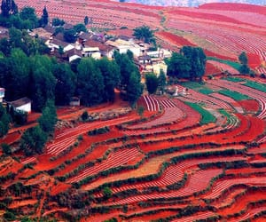 nature, red, and landscape image