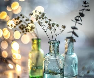 bokeh, bottle, and bottles image