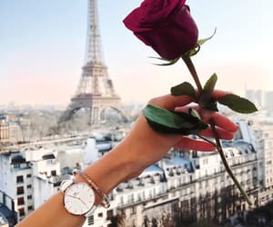city, flower, and eiffel tower image