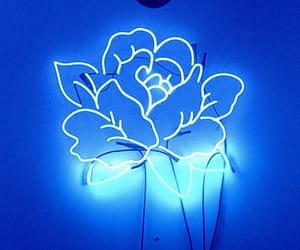 blue, neon, and flower image