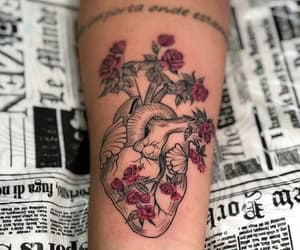 heart, rosas, and roses image
