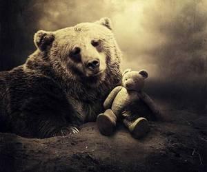 bear, teddy bear, and animal image